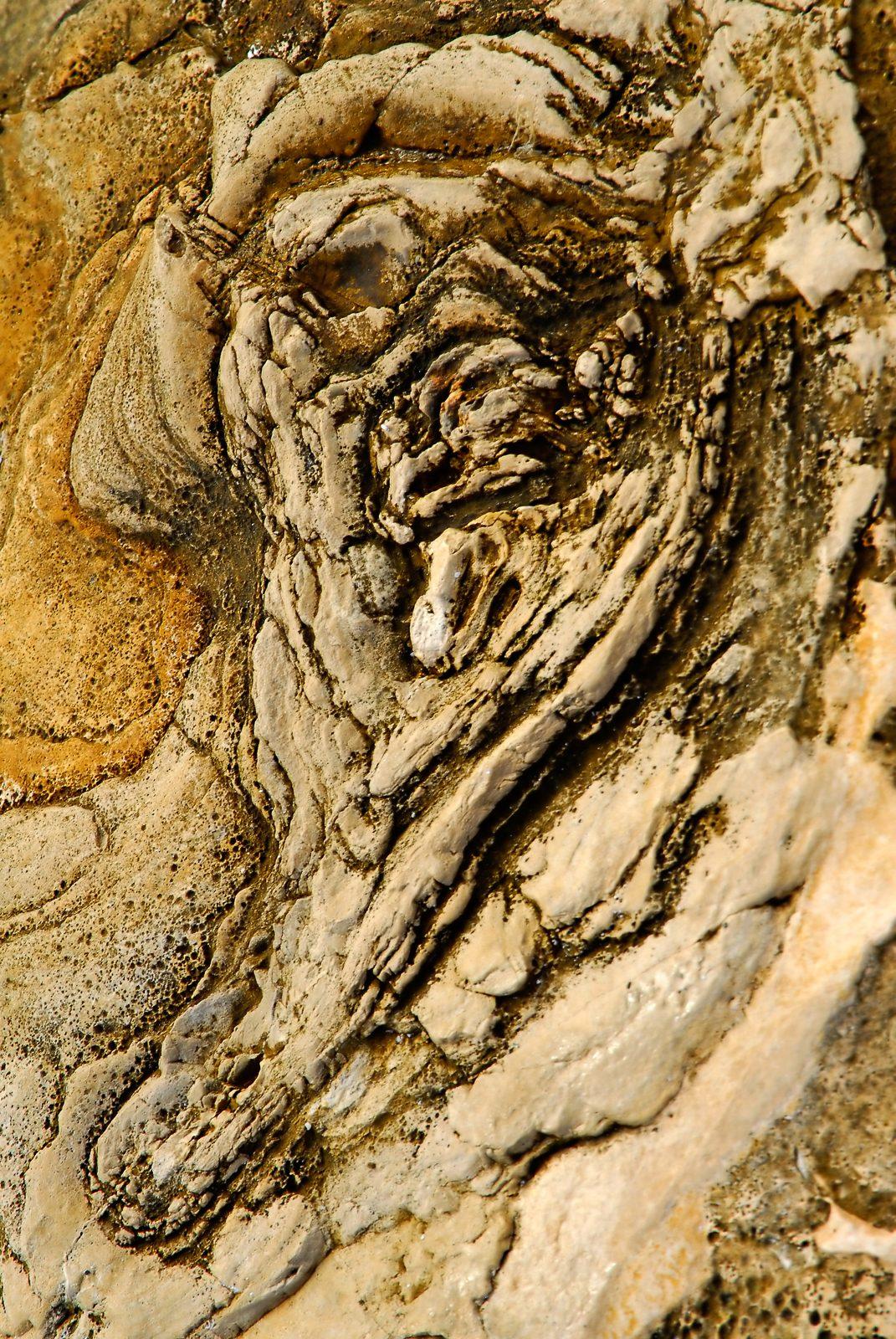 rock-beach-sarasota-0414