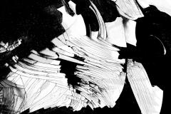 Black & White Abstract Photo