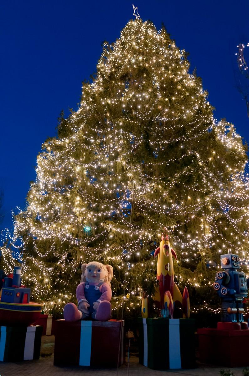 christmas-tree-2007-3583