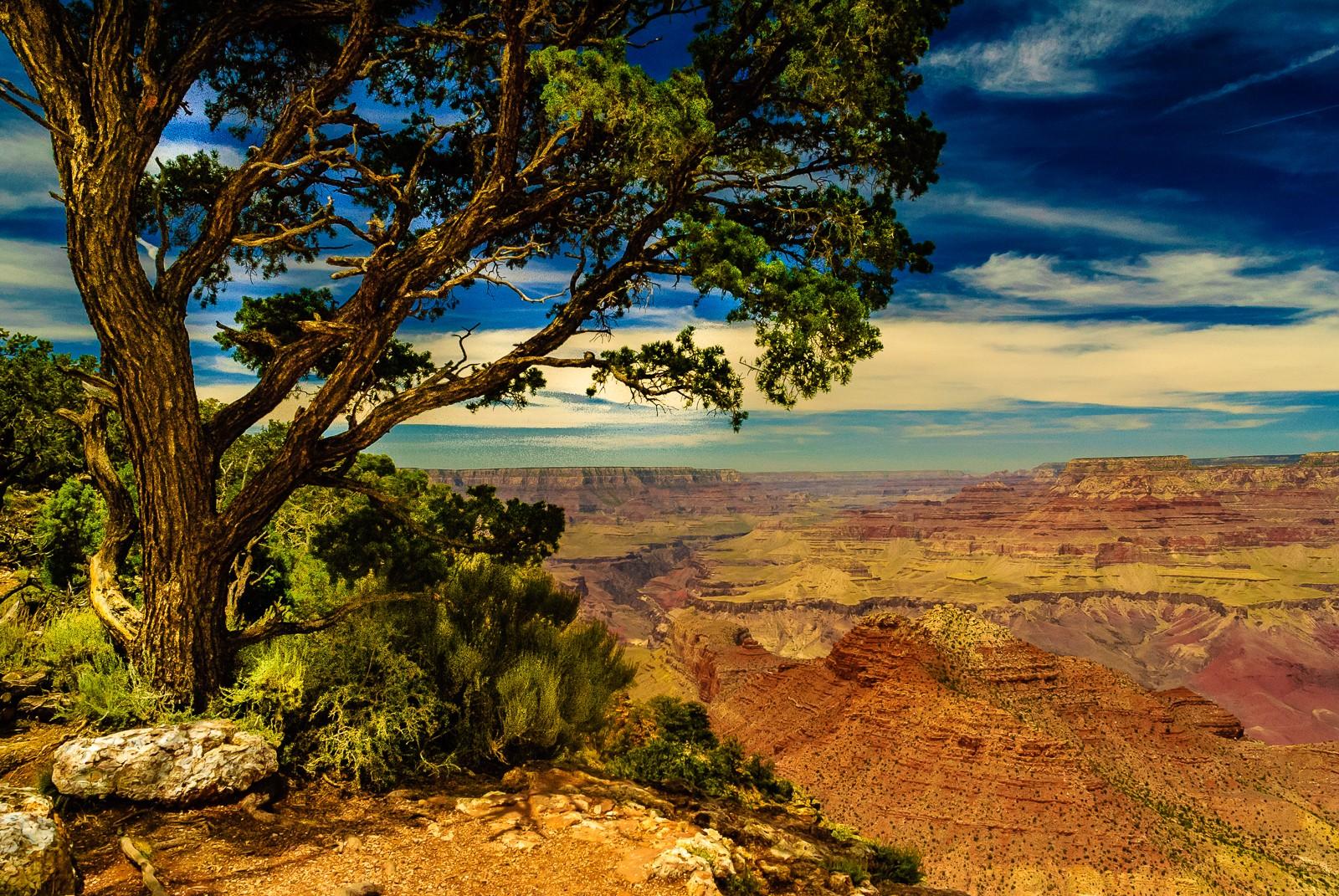 grand-canyon-2648