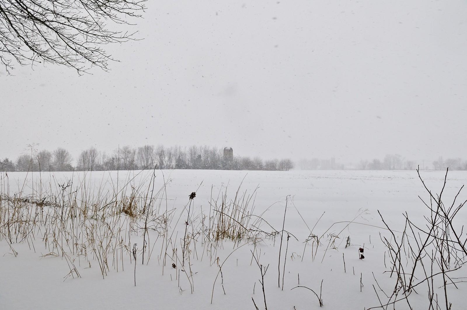 snow-storm-3471