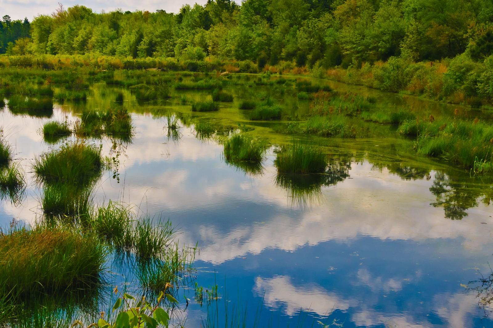 franklin-parker-preserve-9371