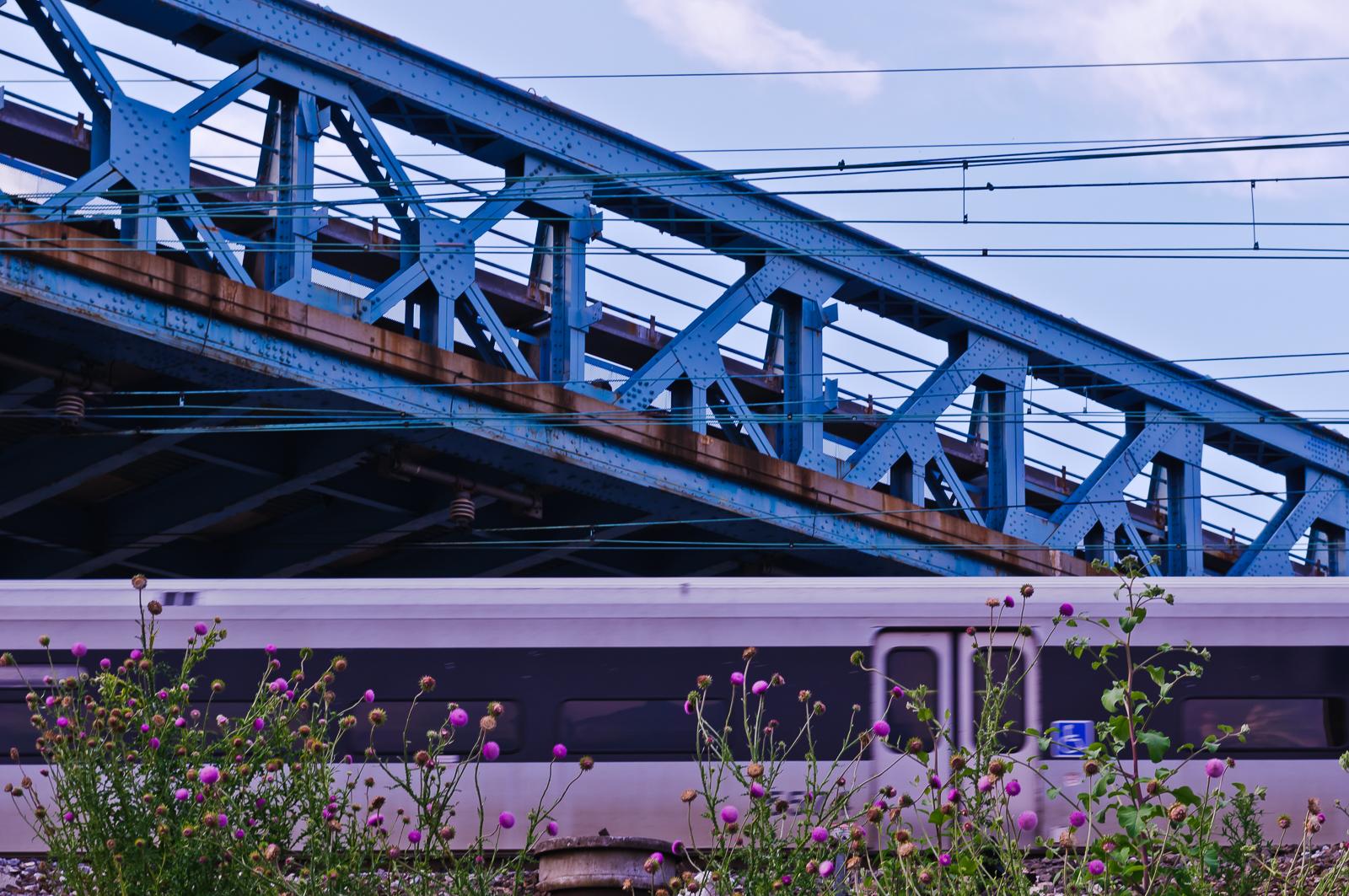 train-bridge-8962