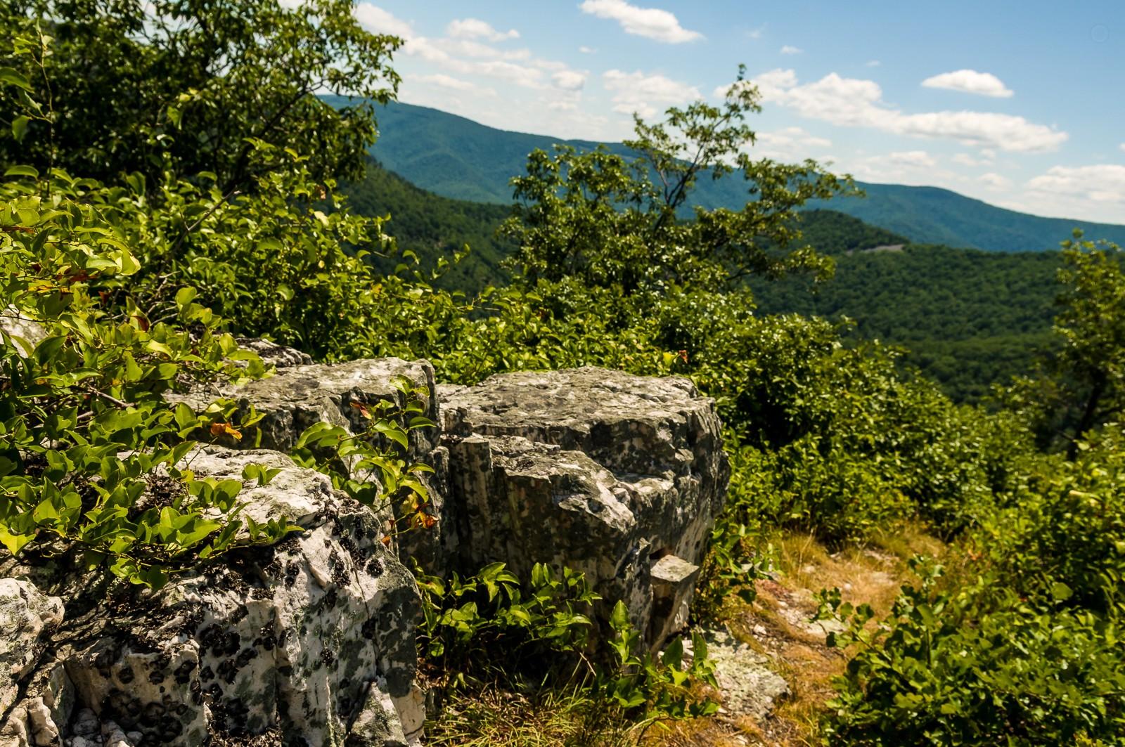 mountain-trail-0869