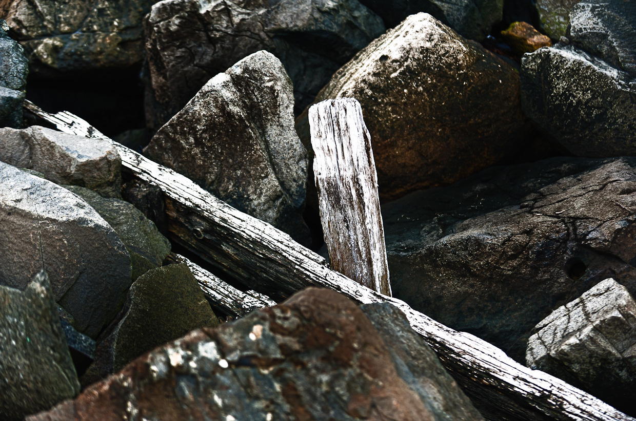 rocks and boards photo 5901