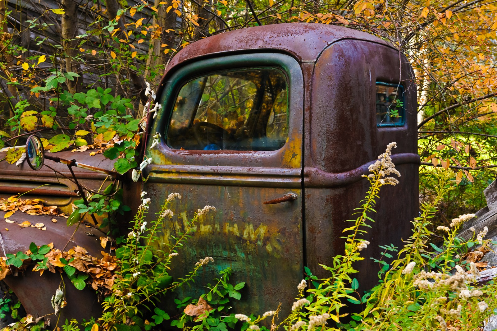 rusty-truck-6505