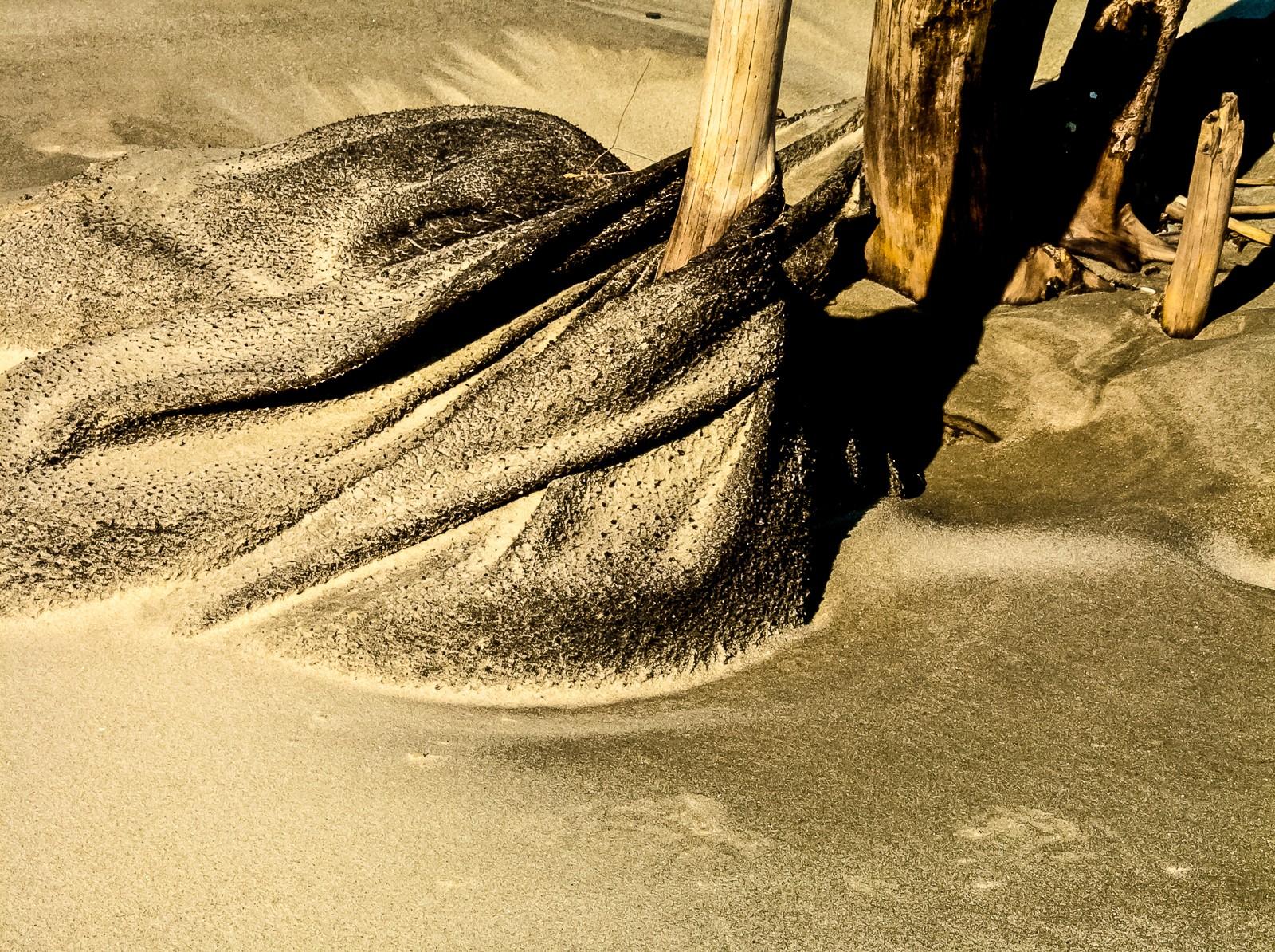 sand-beach-3590