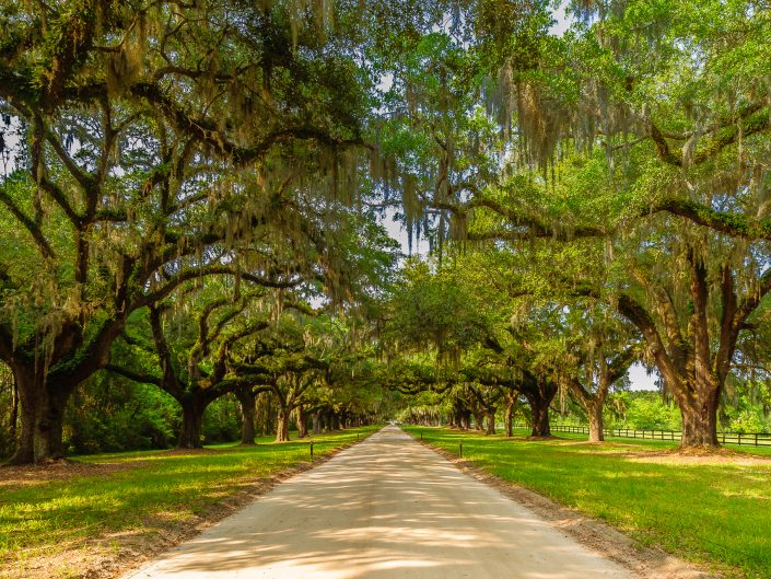 Photo of the boone plantation