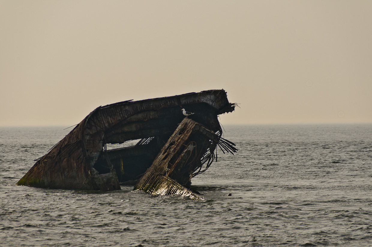 Sunken concrete ship off Cape May Point