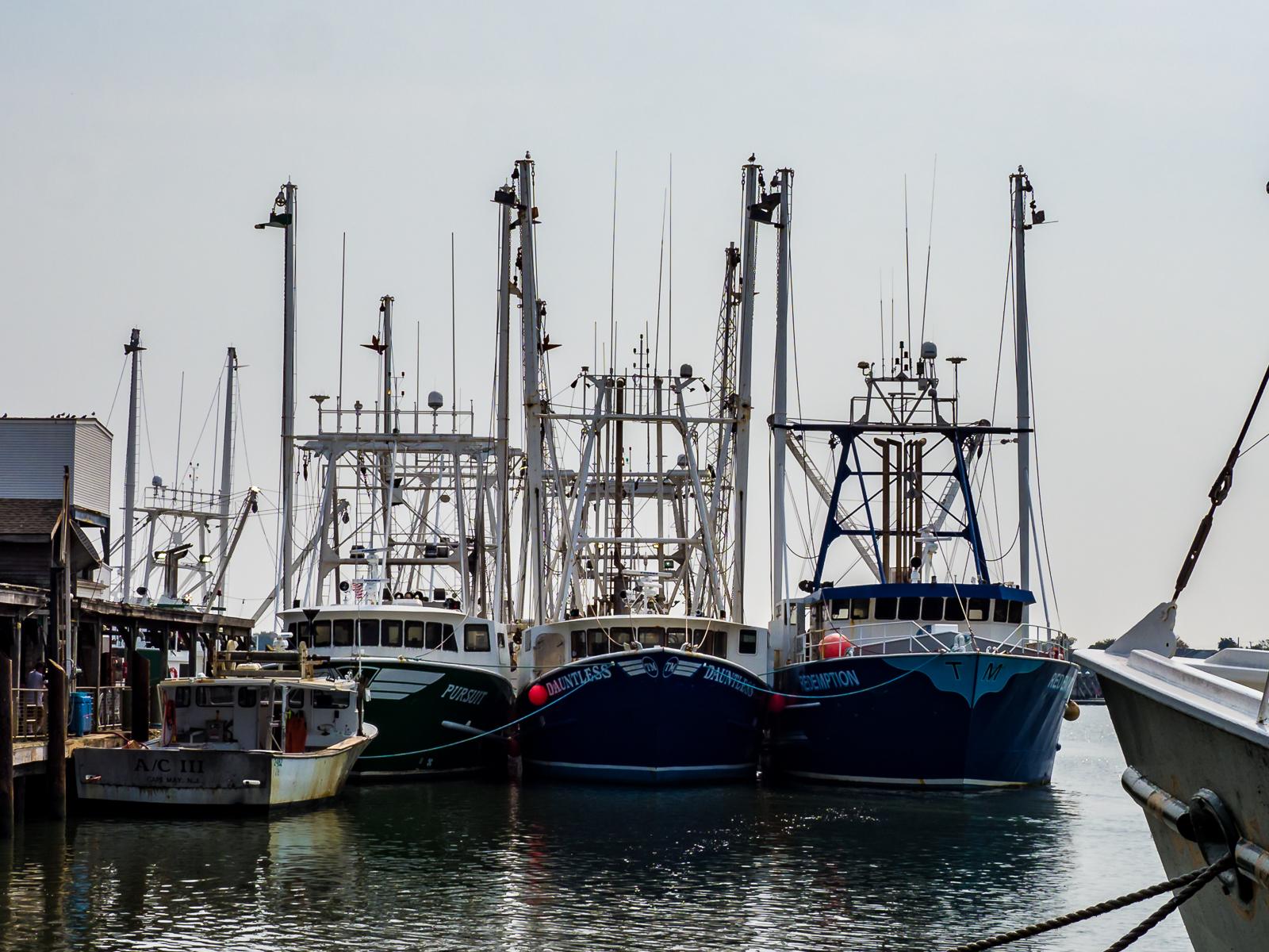 The fishing Fleet at Cape May