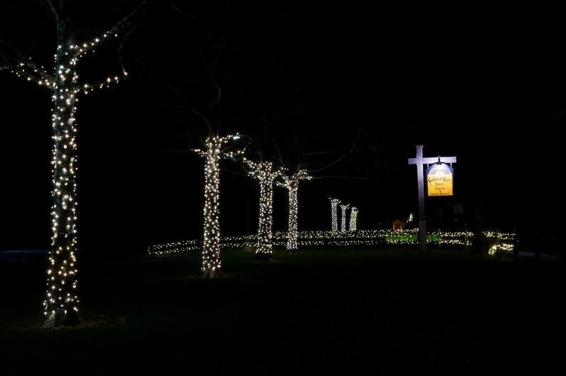 Christmas Lights-3430
