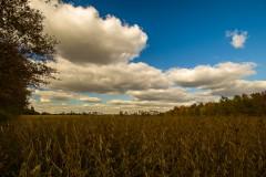 clouds-0575