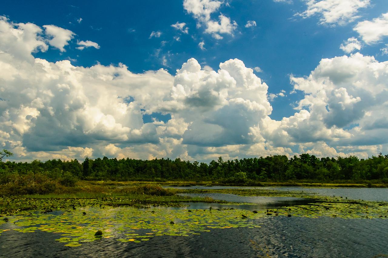 clouds-2845