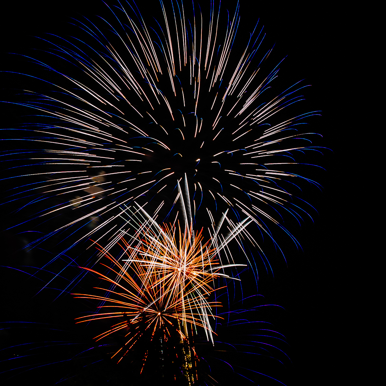 fireworks-4765
