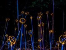 light-installation-1020811