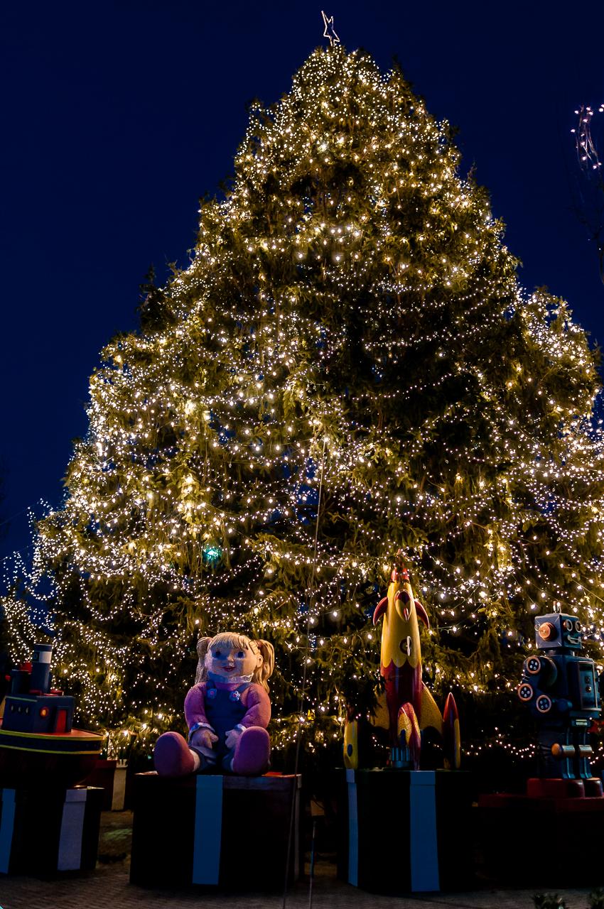 christmas-tree-3583