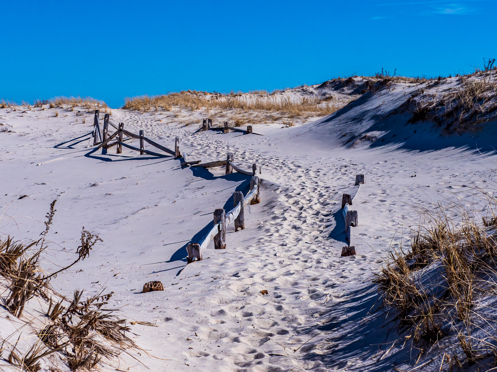 Beach Island photograph
