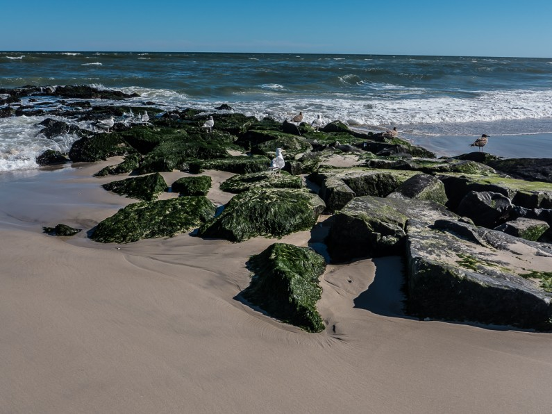 long-beach-island-1020521
