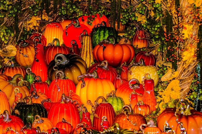 pumpkins-louis-dallara-3775
