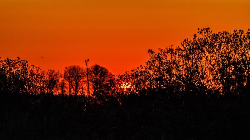 #sunrise-2