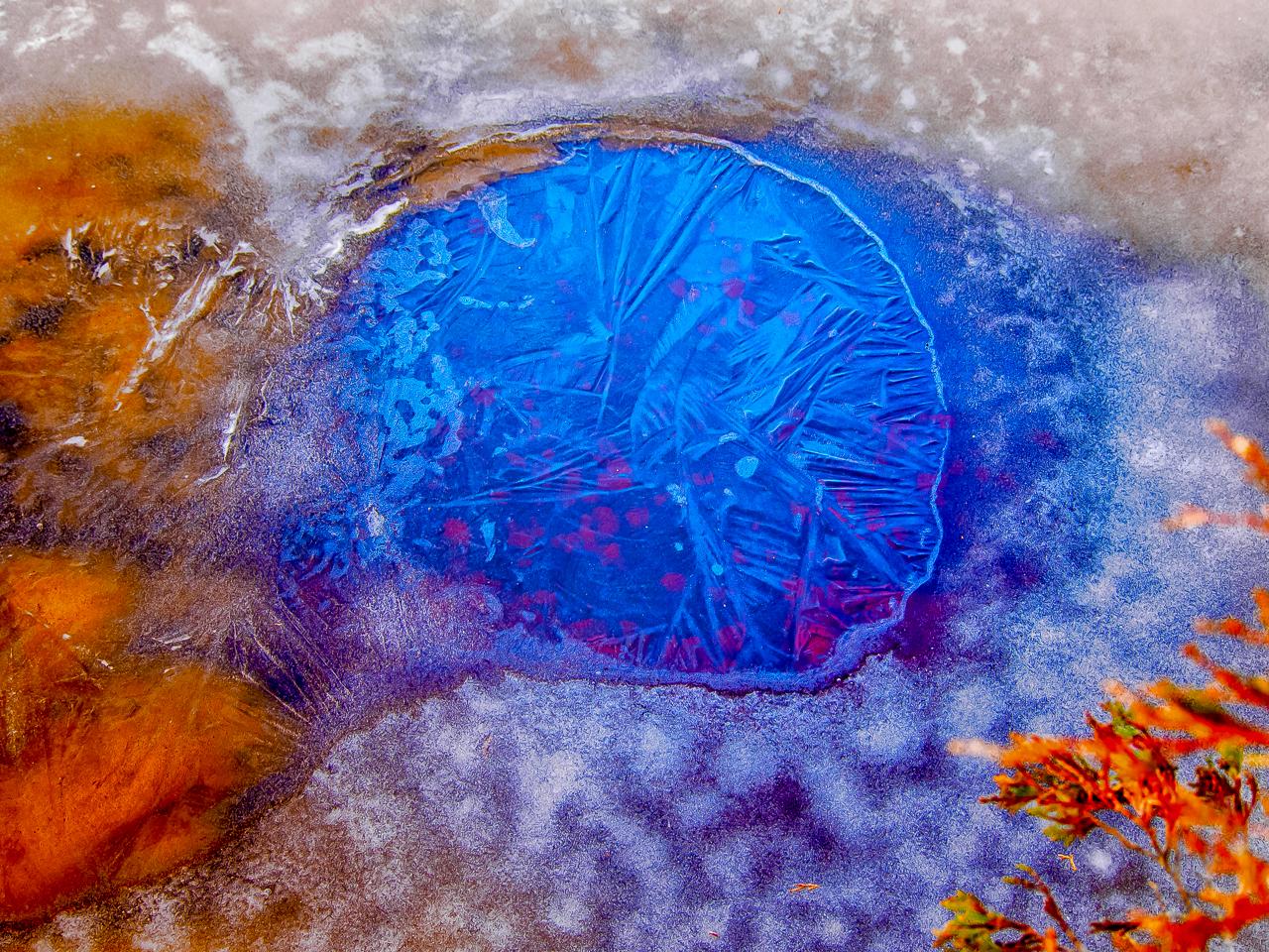 blue-skull-ice
