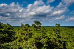 Cloud Play Pine Barrens NJ Photo