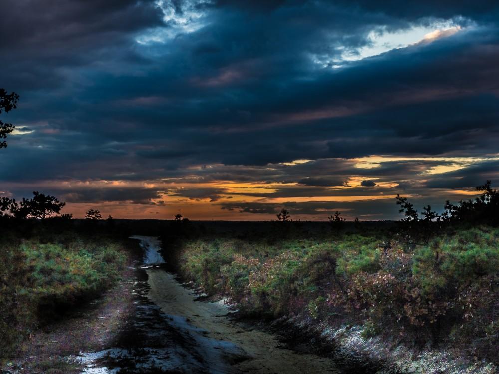 pinebarrens-sunset-83644-1000x750