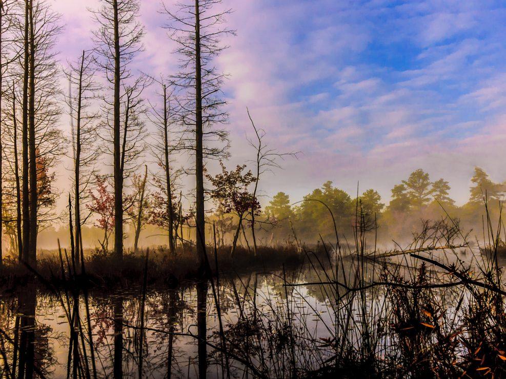 quaker-bridge-pinelands-