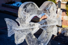 Fire and Ice Festival 2015-4468