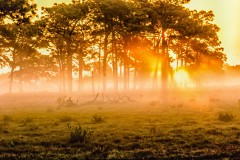 #sunrise--2