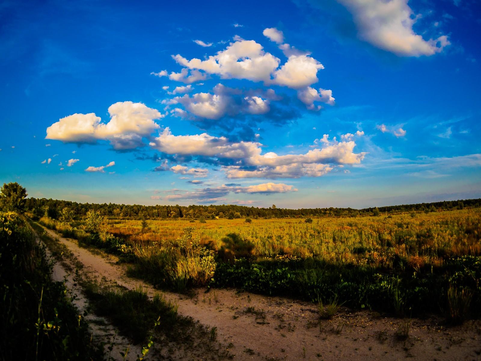 cloudscapes-6611