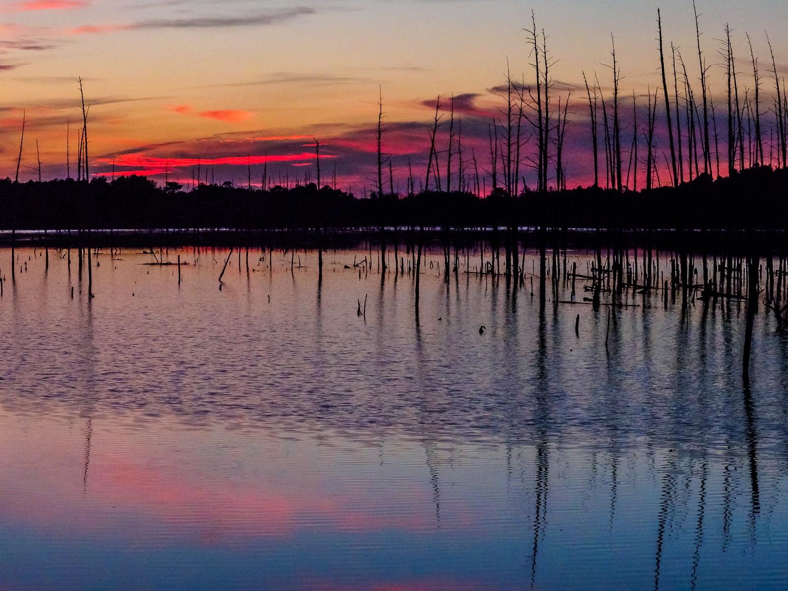 sunset-6644