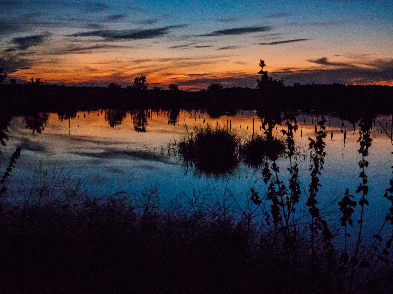 sunset-6654