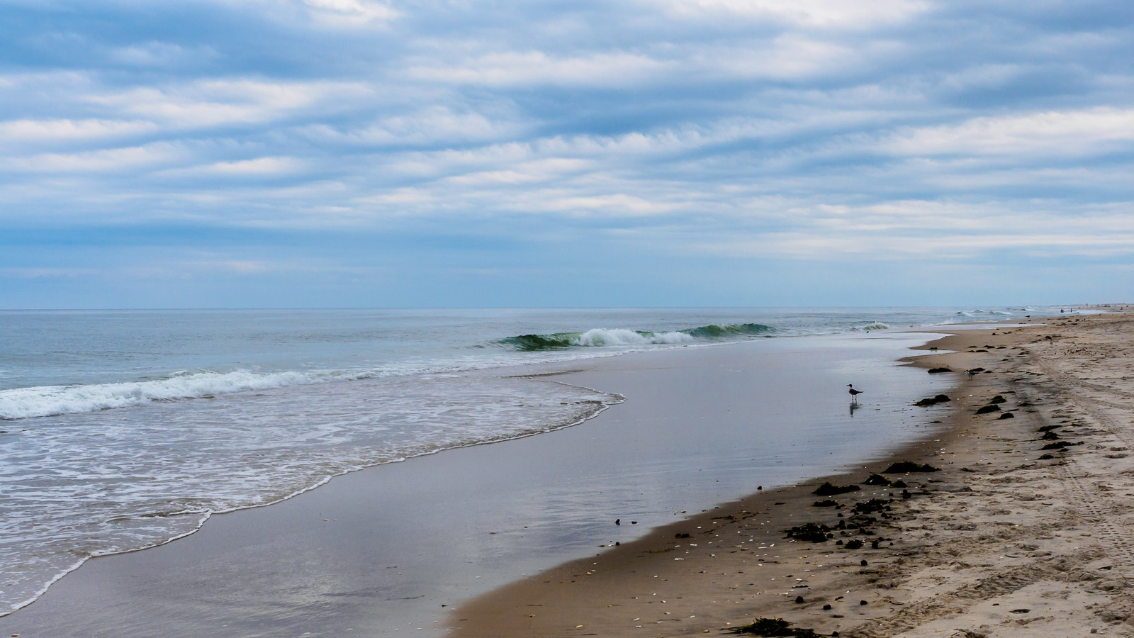 wave-oceans-6388