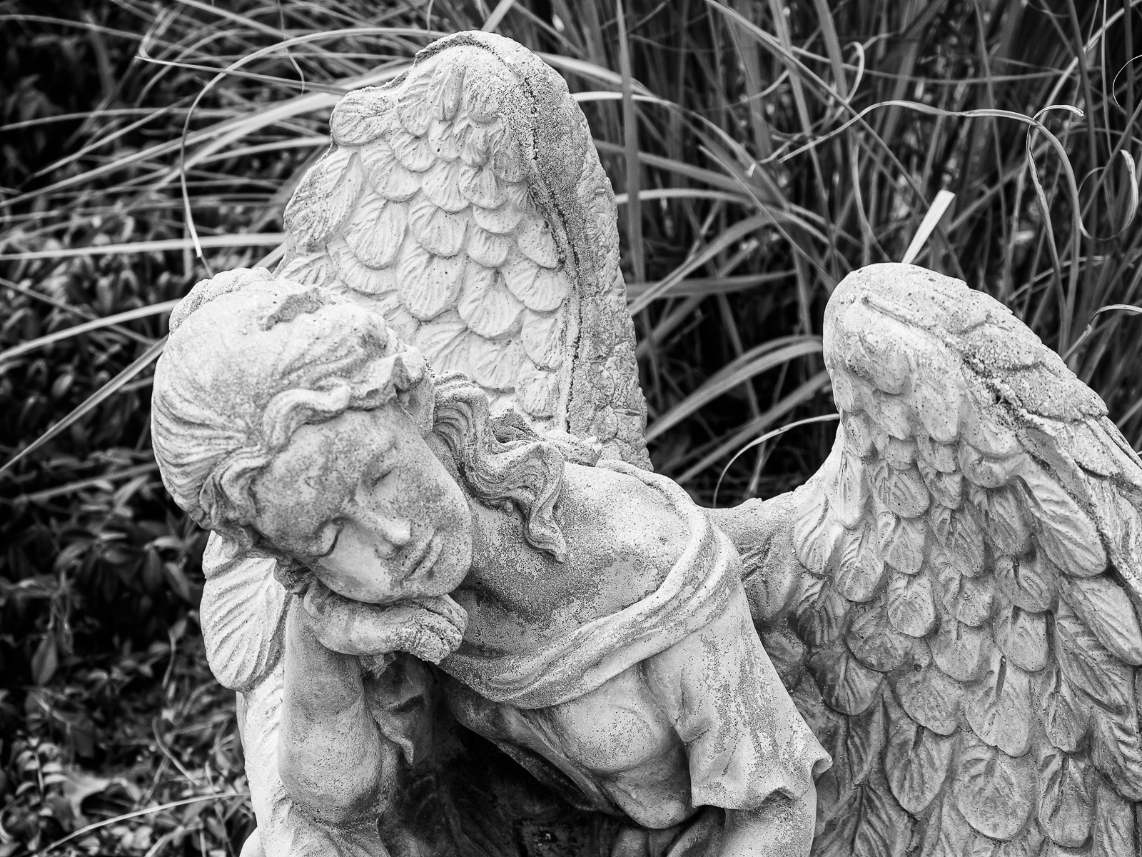 angels-7072