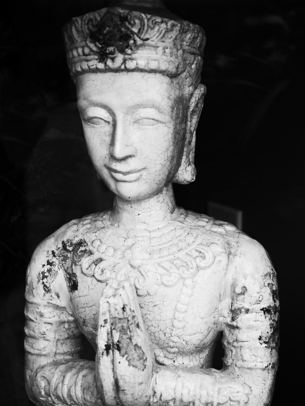 buddha-7081