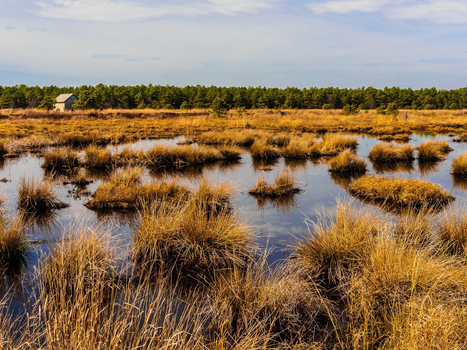 franklin-parker-landscape-3080024