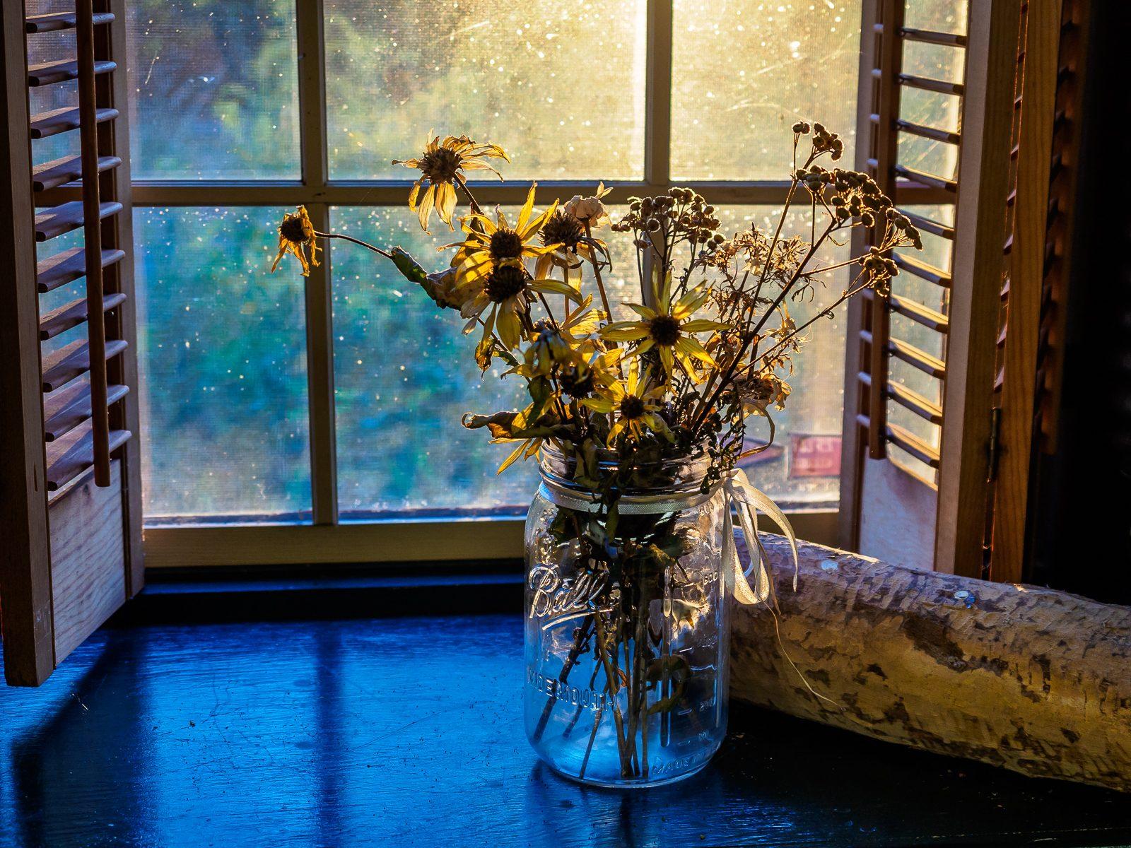 flowers-window-9120001