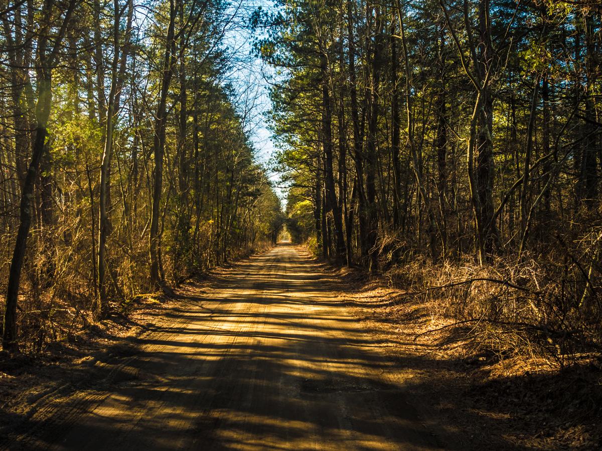 hampton-furance-road