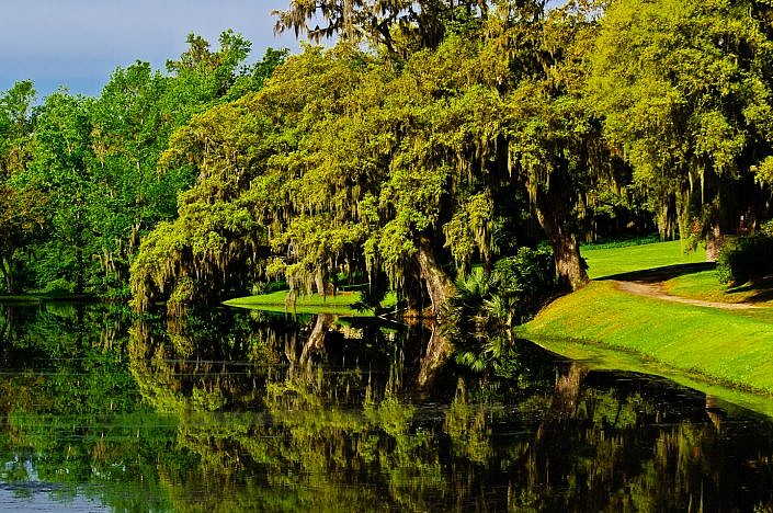 middleton- plantation-photo