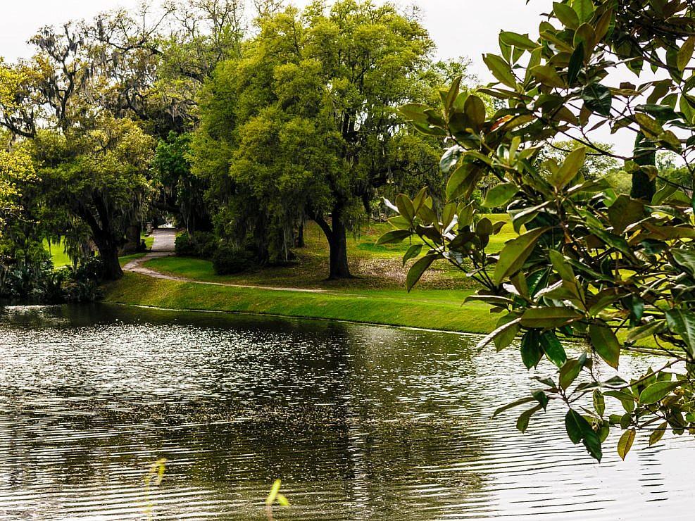 Middleton plantation landscape photograph