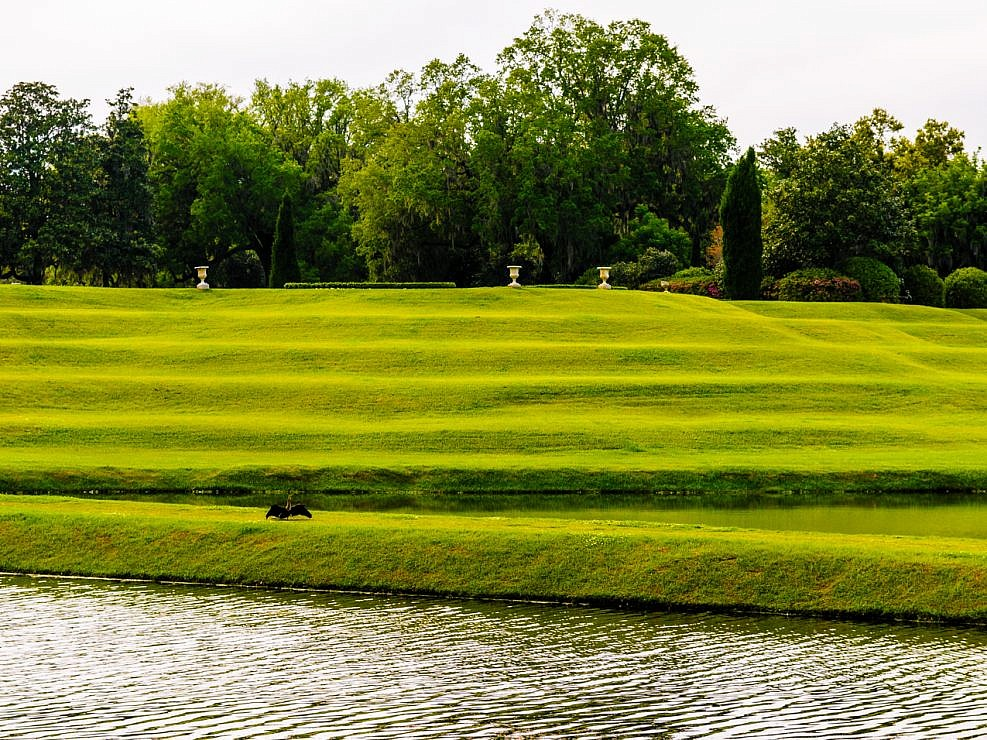 Photograph of the Middleton- plantation-photo-22