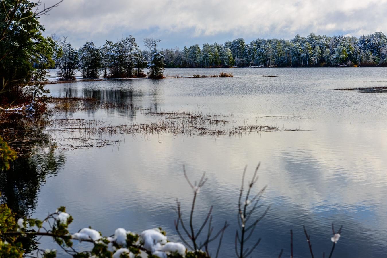 ltd-pine-lands-snow-5739