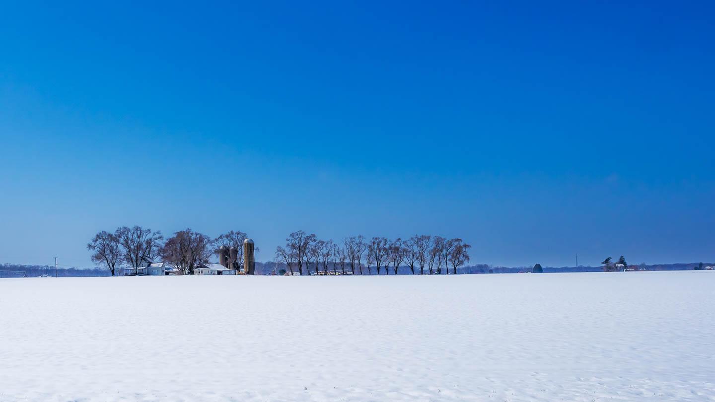 blue winter-photos-4866
