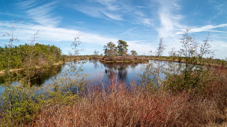 west-franklin-parker-preserve-trees