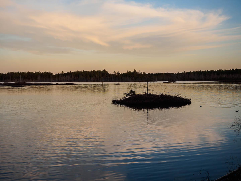 pinelands-reflections-photos-2240493