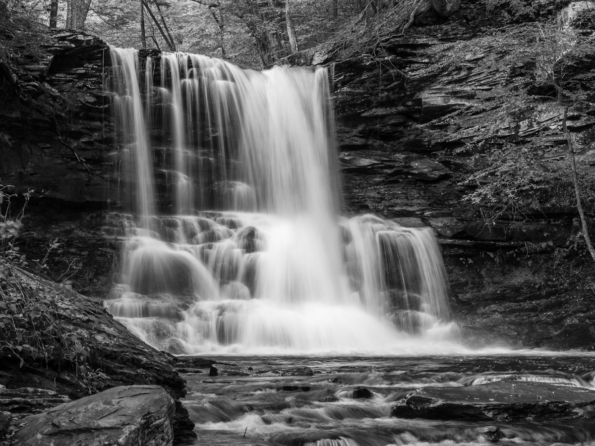 Sheldon Reynolds Waterfall