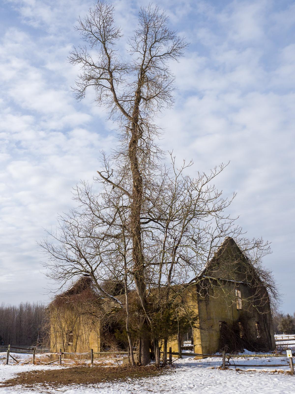 wharton State Forest - Atsion